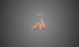 Copy of TMT Telescope