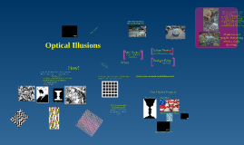 Mrs. Gorham's Optical Illusions