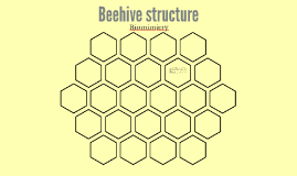 Beehive structure - biomimicry