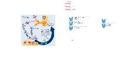 Implementatie IRIS 4 Woonbedrijf