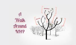 A Walk Around NHP