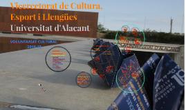 Programa de Voluntariat Cultural