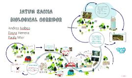 Copy of JATUN SACHA BIOLOGICAL CORRIDOR