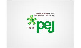 Copy of Raporto pri agado 2013-2014