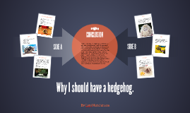 Why I should have a hedgehog.