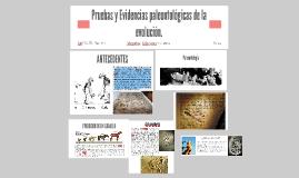 Copy of Pruebas y Evidencias paleontológicas de la evolución.