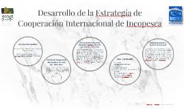 Desarrollo de la Estrategía de Cooperación Internacional de