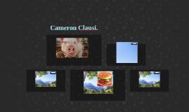 Cameron Clausi.