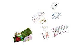 8º Reproducción (Mitosis y Meiosis) ST1 y ST2