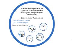 Diferenças ontogenéticas em Tegulinae e Calliostomatinae (Ga