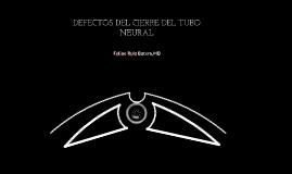 defecto tubo neural