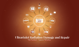 Ultraviolet Radiation Damage and Repair