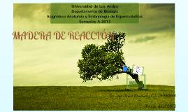 Copy of Madera de reaccion