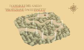"""I CONSIGLI DEL GALLO """"PROTEZIONE DAGLI INSETTI"""""""