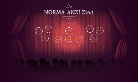 Copy of NORMAS INTERNACIONAL ANZI Z.16.1