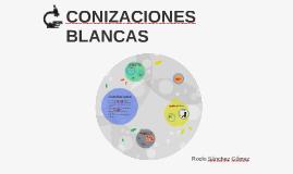 CONIZACIONES BLANCAS