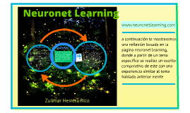 Neuronet Learning