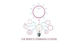 THE BODY'S COMMAND CENTER