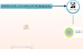 Copy of Modelo de los anillos de Burgess