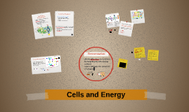 Chapter 4: Cells and Energy