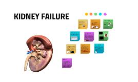 Copy of Kidney Disease