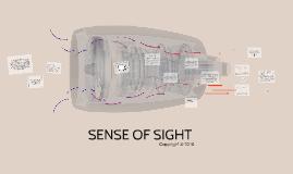 Copy of SENSE OF VISION