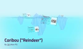 "Caribou (""Reindeer"")"