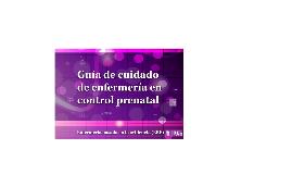 Copy of GUÍA DE CUIDADO DE ENFERMERÍA EN CONTROL PRENATAL
