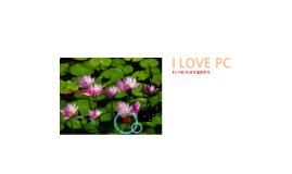 PC 사랑