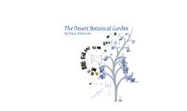 The Desert Botanical Garden