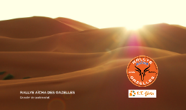 Rallye des Gazelles : Sponsors