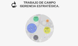 TRABAJO DE CAMPO GERENCIA ESTRATEGICA.