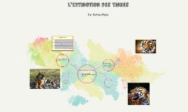 L'extinction des Tigres