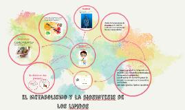 Copy of el metabolismo y la biosintesis