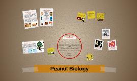 Peanut Biology