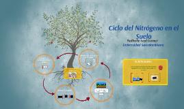 Copy of Ciclo del Nitrogeno en el suelo