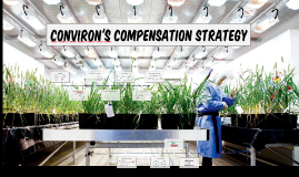 Copy of Conviron's Compensation Strategy