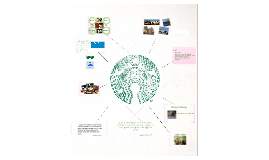 Copy of Copy of The Starbucks Experience