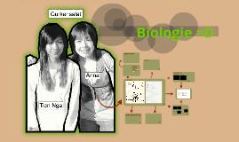 1M2011Bio_Gurkensalat