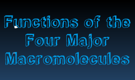 Copy of Functions of the Four Major Macromolecules