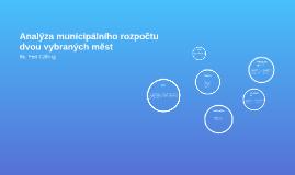 Analýza municipálního rozpočtu dvou vybraných měst
