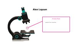 Alex Lupsan Journal #3 Product Team