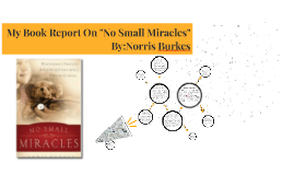 """My Book Report On """"No Small Miracles"""""""