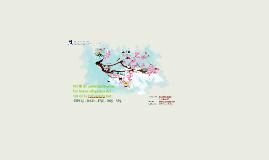 Perfil de antocianinas en las bayas silvestres del sur de la