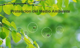 Copy of Proteccion del del Medio Ambiente