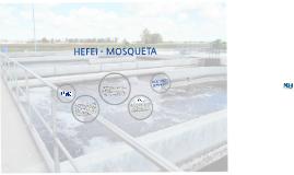 HEFEI - MOSQUETA