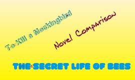 Novel Comparison