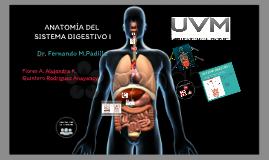 Anatomía del Sistema Digestivo I