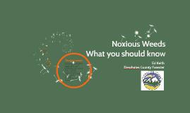 DRRH 6 -  Noxious Weeds