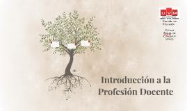 Introducción a la Profesión Docente